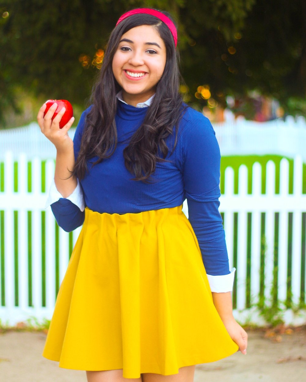 5 DIY Disney Halloween Costumes